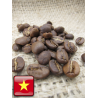 Da Lat Micro lot from Vietnam